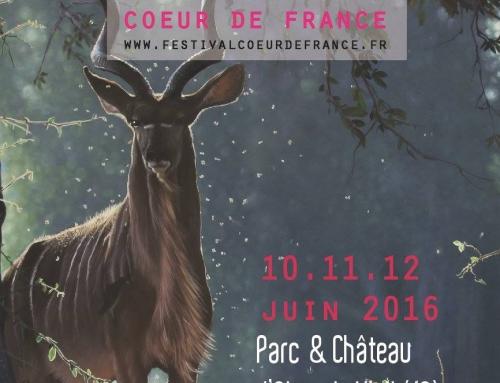 Festival international d'arts nature «Cœur de France» du 10 au 12 mai 2016 au château d'Ainay-le-vieil (18)