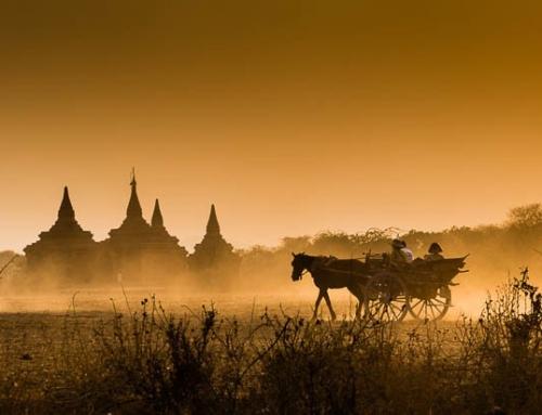 Birmanie 1. carriole dans Bagan au coucher du soleil