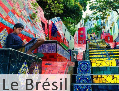 Exposition sur le Brésil du 14.10 au 31.12.2016